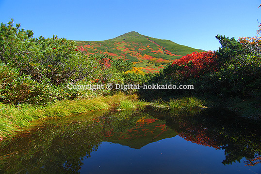 東川町最近の投稿北海道各地の写真