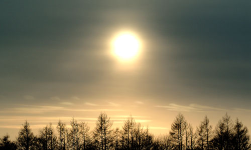 中雪裡 (鶴居村) 3/10/03