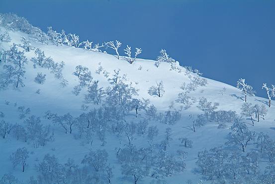 オロフレ峠 (登別市) 2/24/2012