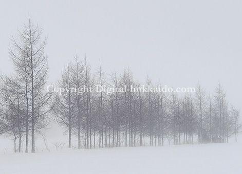 士幌町 – 北海道の風景写真3000点以上、デジタル北海道