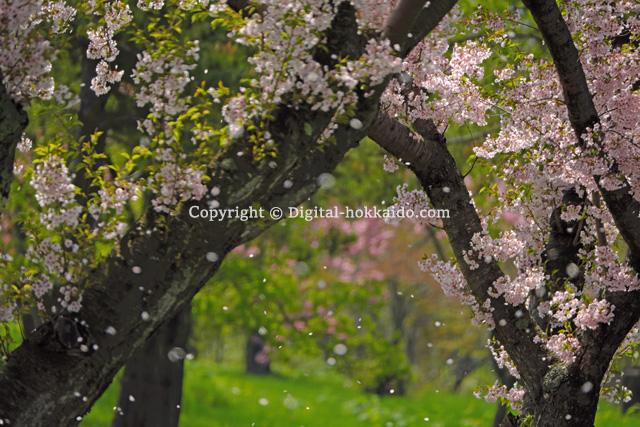 洞爺湖町 – 北海道の風景写真3000点以上、デジタル北海道